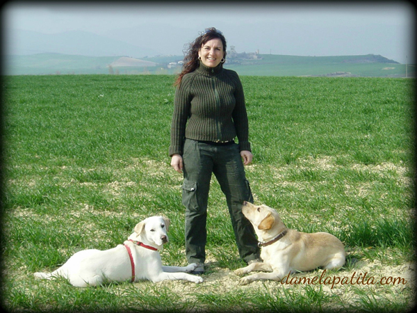 adiestramiento_canino