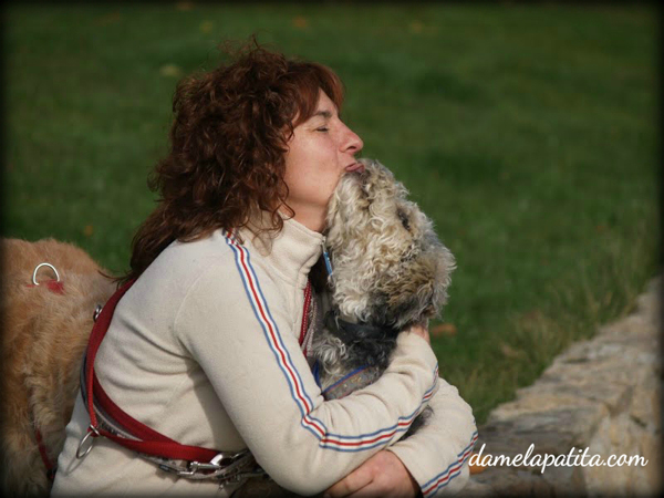 admiestramiento_canino